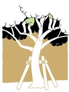 小学生くらいの子たちが公園で木登りをしていました。私は夢中で登りすぎて、降りるのに恐い思いをしたことがありひょいひょい上り下りしてて凄いなと思いました。