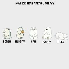 Pin Natcha On Wallpapers We Bare Bears Bare Bears Ice regarding We Bare Bears Wallpaper Quotes - All Cartoon Wallpapers