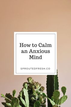 How to Calm an Anxious Mind