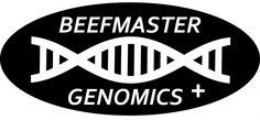 Beefmaster Releases Genomic-Enhanced EPDs