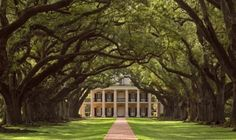 5 Most Popular New Orleans' Plantations Featured in Film - TripShock!