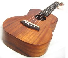 Ukulele: make your own, learn it, learn about it.  I could see one of the kids enjoying this.
