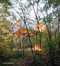 Modern tree house in Japan - Una versión moderna de la casa del árbol - Arquitectura de www.hsgwg.com