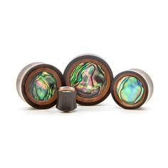 Wood Plugs | Plugs - Ear Gauges, Flesh Tunnels for Stretched Ears
