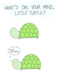 What's on your mind little turtle