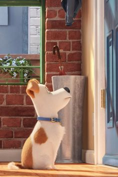 7 Reasons You Have to Take Your Kids to See The Secret Life of Pets