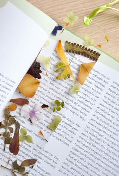 Laminierte, gepresste Blumen in Form eines Lesezeichens
