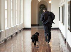 Obama and Bo :)