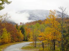 Have you been to New Hampshire? - 'Foggy Nh Fall Folliage' - http://pennysprints.artistwebsites.com/featured/foggy-nh-fall-folliage-penny-lisowski.html via @fineartamerica