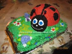 Homemade Lady Bug Cake: This lady bug cake was for my daughter's 8th birthday. I thought it was so pretty sitting on the table. It is made of a sheet cake bottom. The ladybug
