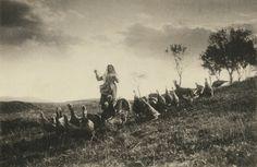 Ludovico Pachò, La gardeuse de dindons, 1906 Stampa alla gelatina bromuro d'argento  Archivio Fotostorico privato (Torino)