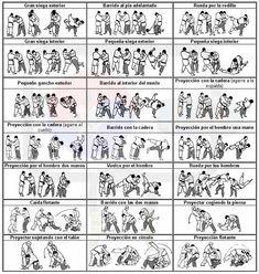 proyecciones básicas, hapkido