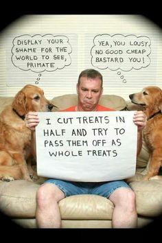 Funny...  Human shaming