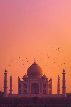 Taj Mahal - India by Pinkesh Modi - Photo 284786627 / Mecca Wallpaper, Islamic Wallpaper, Aesthetic Backgrounds, Aesthetic Wallpapers, Mekka Islam, Taj Mahal, Indian Aesthetic, Mosque Architecture, Beautiful Mosques