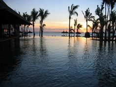 mauritios sunset palmtrees my next dream holiday