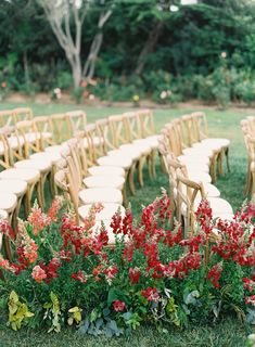 If you think these red florals are gorgeous, then you have to see the rest of this colorful California wedding. View the full celebration on PartySlate.  #weddingideas #weddingflorals #dreamwedding #weddingplanning #outdoorwedding Wedding Ceremony Seating, Wedding Ceremony Flowers, Wedding Ceremony Decorations, Ceremony Backdrop, Floral Wedding, Wedding Aisles, Wedding Ceremonies, Wedding Ideas, Aisle Decorations