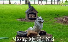 """Not A Day Goes By That I Don't Think Of My Beautiful Eskie """"Niki Dogg"""", Especially When I Look Out What Was Her """"Favorite"""" Window. Vickie Thayer"""