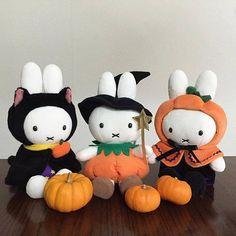 Miffy on Halloween Mad Cap, Female Rabbit, Miffy, Kid Character, Dutch Artists, Hallows Eve, Halloween, Hello Kitty, Bunny