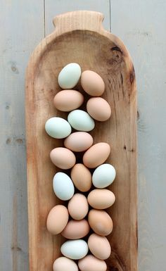 Someday I won't need to color my eggs.... So beautiful.  Jesse Duncan