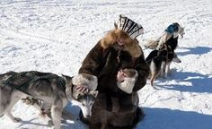 Canada's Arctic Council presidency will be held in the interests of indigenous peoples - Politics: Arctic-Info Arctic, Camel, Presidents, Russia, Hold On, Politics, Canada, News, People