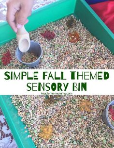 Simple Fall Themed Sensory Bin, simple but fun for toddlers and preschoolers!