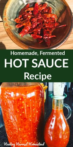 Make Homemade Fermented Hot Sauce with Dried Peppers: An Easy Recipe to Make Any Time of Year — Home Healing Harvest Homestead Fermented Hot Sauce Recipe, Hot Sauce Recipes, Condiment Recipe, Herbal Remedies, Natural Remedies, Dried Peppers, Fermentation Recipes, Fermented Foods, Sauces