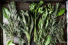 Turn any fresh herb into an all-purpose herb salt.