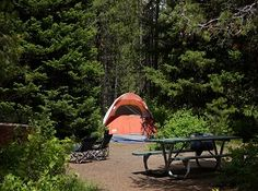 Colter Bay Campround. No reservations. $23 per night.  fill by mid afternoon