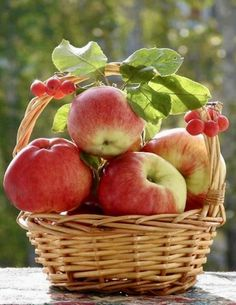 Source: art of nature Apple Harvest, Fall Harvest, Autumn, Fresh Fruits And Vegetables, Fruit And Veg, Wicker Picnic Basket, Fruit Photography, Beautiful Fruits, Weird Food