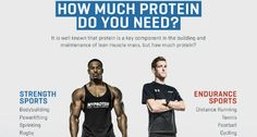 How much protein do I need? Find out now using Myprotein's handy infographic, at The Zone!