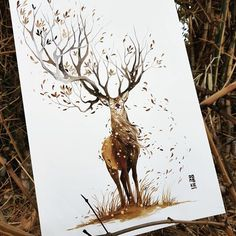 Animal Spirits Through Watercolor | HeyDesign Graphic Design & Typography Inspiration
