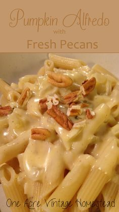 Rich and creamy pumpkin-parmesan cheese sauce topped with fresh pecans. Pumpkin Alfredo from One  Acre Vintage Homestead #pumpkin #fallrecipes