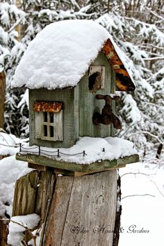 Ana Rosa...Bird house with a tap, I guess that is so they can have a bird bath:):)