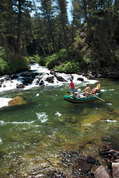 Wild trout, steelhead, and now salmon, in one of central idaho's most spectacular landscapes.