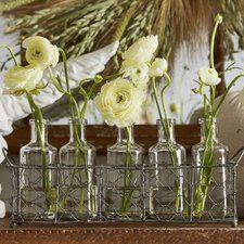 Glass 6 Piece Glass Bottle/Vase Set