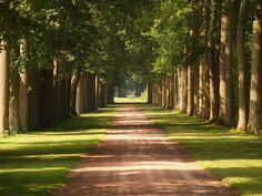 Driveway of my dreams...