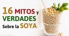 Descubra los peligros de la soya y cuales alimentos o productos de soya son seguros para consumir. http://articulos.mercola.com/sitios/articulos/archivo/2015/06/27/resumen-de-los-peligros-de-la-soya.aspx