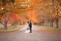 Oatlands Historic House & Gardens- Oatlands Lane turns lovers lane! Such great wedding photos! Styled Shoot Photo By Mollie Tobias Photography.
