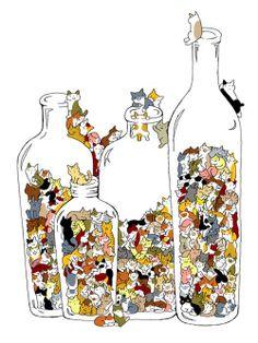 Quatre bouteilles de chats ha !  ha !  ha !