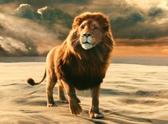 Aslan-Chronicles-of-Narnia // I want an Aslan tattoo!