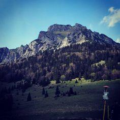 """Polubienia: 32, komentarze: 1 – Hasające Zające (@hasajacezajace) na Instagramie: """"Welky Rozsutec, Mala Fatra, Slovakia. #hasajacezajace  #gory  #mountains  #mountainview  #hike…"""""""