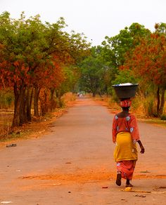 Camino al progreso - #GuineaBissau http://www.travelbrochures.org/92/africa/go-to-see-guinea-bissau #Expo2015 | Cluster #Islands