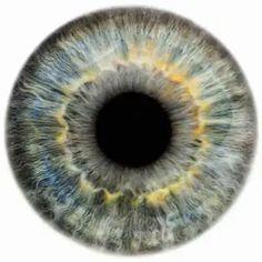 Amazing Learn To Draw Eyes Ideas. Astounding Learn To Draw Eyes Ideas. Rankin Photography, Fine Art Photography, Realistic Eye Drawing, Drawing Tips, Drawing Ideas, Eye Black Designs, Iris, Urban Decay Eyeshadow, Sad Pictures