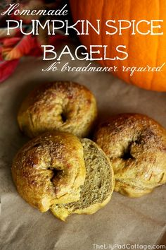 Pumpkin Spice Bagel Recipe - Wonder if I can make this Gluten free. really been craving a pumpkin bagel with pumpkin cream cheese! Pumpkin Spice Bagel Recipe, Pumpkin Recipes, Fall Recipes, Pumpkin Pumpkin, Cooking Recipes, Healthy Recipes, Fall Treats, The Best, Breakfast Recipes