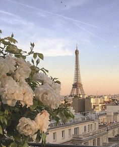 Uploaded by petalodulce. Find images and videos about aesthetic, flowers and travel on We Heart It - the app to get lost in what you love. City Aesthetic, Travel Aesthetic, Beige Aesthetic, Places To Travel, Places To Go, Aesthetic Backgrounds, Paris Travel, Travel Europe, Travel Goals