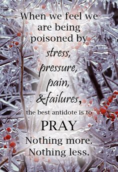 Pray when we fail or feel stressed, pressured or are in pain https://www.facebook.com/GodFruits/photos/759349914159292
