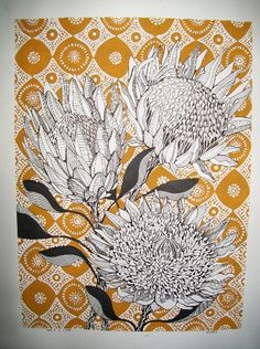 Nicole Cronje - Protea Botanical Drawings, Botanical Art, Botanical Illustration, Illustration Art, Illustrations, Floral Drawing, Africa Art, Indigenous Art, Art Techniques
