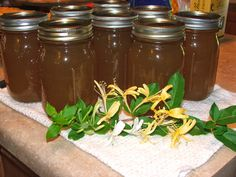 Canned Honeysuckle Syrup (use for digestive disorders inc. inflammation of the small intestine, dysentery, colds, cough & congestion, sore throats, flu & asthma, fevers, headaches, arthritis, etc. It clears toxins & kills or inhibits germs, is a natural antibiotic used for staph or strep & helps nausea ... I think I need to plant Honeysuckle :)