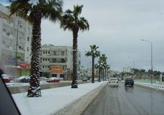 (Aurobah) street - Beida city - cyrenaica - libya  (17  February 2008)