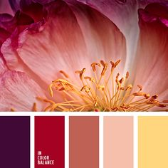 Color Cardinal supplemented delicate shades of terracotta and color of ripe plums. The color combination of cold and warm tones creates a refreshing and pleasant atmosphere. The color scheme can be used for interior bedroom, a living room, a cozy library, or business office for a creative nature. Can be used for evening dresses from expensive fabrics - satin, silk taffeta, velvet.